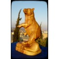Brown Bear standing on its Hind Legs : Art# G700